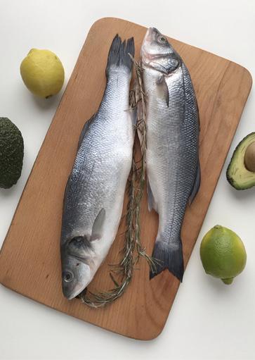 Dziekie ryby z miejsc ich występowania